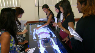 Students using anatomage table