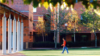 Image of Curtin University grounds