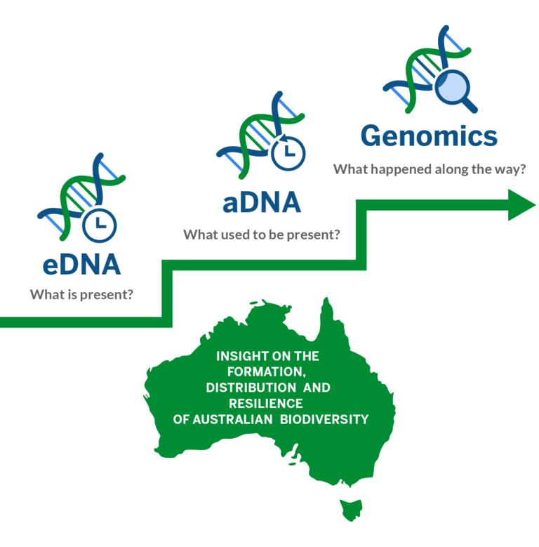 eDNA/aDNA/Genomics infographic